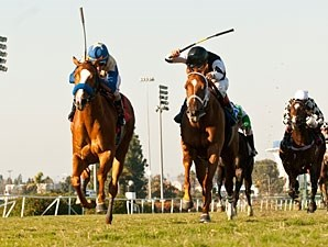 More Than Love wins the 2011 Miesque.
