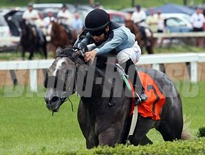Agressive Elegance wins the 2012 Tomboy.