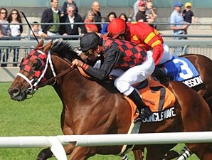 Jungle Wave Rumbles Home in Play the King