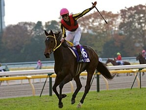 Buena Vista in the Japan Cup.