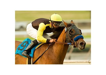 "Dearest Trickski<br><a target=""blank"" href=""http://www.bloodhorse.com/horse-racing/photo-store?ref=http%3A%2F%2Fpictopia.com%2Fperl%2Fgal%3Fprovider_id%3D368%26ptp_photo_id%3D3190029%26ref%3Dstory"">Order This Photo</a>"
