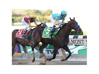"Frizette winner A Z Warrior faces 12 in the Juvenile Fillies.<br><a target=""blank"" href=""http://www.bloodhorse.com/horse-racing/photo-store?ref=http%3A%2F%2Fpictopia.com%2Fperl%2Fgal%3Fprovider_id%3D368%26ptp_photo_id%3D9254581%26ref%3Dstory"">Order This Photo</a>"