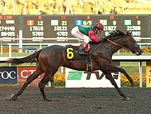 CashCall Next for Real Quiet Winner Tamarando
