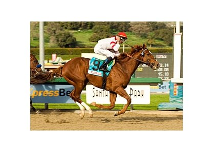 "Go Between won the Sunshine Millions Classic this past winter at Santa Anita. <br><a target=""blank"" href=""http://www.bloodhorse.com/horse-racing/photo-store?ref=http%3A%2F%2Fpictopia.com%2Fperl%2Fgal%3Fprovider_id%3D368%26ptp_photo_id%3D3398935%0D%0A%26ref%3Dstory"">Order This Photo</a>"