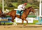 "Sunshine Millions Classic winner Go Between is the horse to beat in the Ben Ali Stakes.<br><a target=""blank"" href=""http://www.bloodhorse.com/horse-racing/photo-store?ref=http%3A%2F%2Fpictopia.com%2Fperl%2Fgal%3Fprovider_id%3D368%26ptp_photo_id%3D3398935%26ref%3Dstory"">Order This Photo</a>"