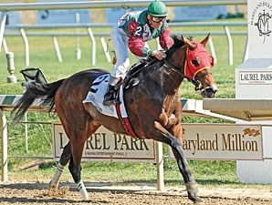 Moon Catcher takes the Maryland Million Oaks.