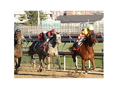 Wine Princess pulls away from the pack to win the Falls City Handicap.
