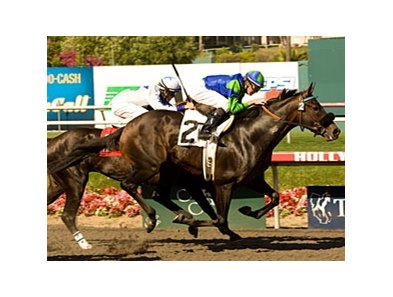 "Golden Itiz gets up late to win the Affirmed.<br><a target=""blank"" href=""http://www.bloodhorse.com/horse-racing/photo-store?ref=http%3A%2F%2Fpictopia.com%2Fperl%2Fgal%3Fprovider_id%3D368%26ptp_photo_id%3D9073942%26ref%3Dstory"">Order This Photo</a>"