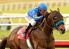 Game On Dude won the Native Diver Handicap on Dec. 1, his most recent start.