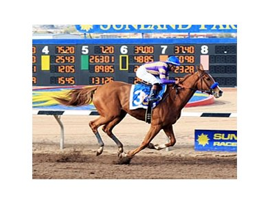 Princess Arabella wins The Sunland Park Oaks.