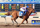 Nearly Deja Vu in the Sunland Park Oaks