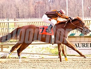Plum wins the 2011 Maryland Juvenile Filly Championship.