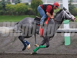 Smokey Fire at Woodbine, September 17, 2010.