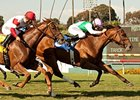 Emollient won the American Oaks on the Hollywood Park turf on July 13.