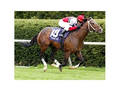 Nightlinger won the 2008 Shakertown at Keeneland.