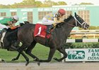 Prospective pulls away from Golden Ticket to win the Tampa Bay Derby.