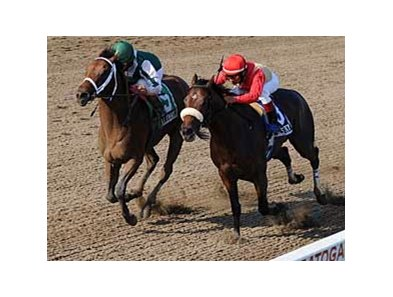 "Kodiak Kowboy (green silks) passes Desert Key to win the Amsterdam (gr. II). <br><a target=""blank"" href=""http://www.bloodhorse.com/horse-racing/photo-store?ref=http%3A%2F%2Fpictopia.com%2Fperl%2Fgal%3Fprovider_id%3D368%26ptp_photo_id%3D5302638%0D%0A%26ref%3Dstory"">Order This Photo</a>"