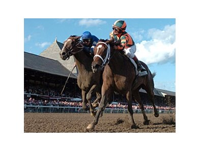 "Proud Spell <br><a target=""blank"" href=""http://www.bloodhorse.com/horse-racing/photo-store?ref=http%3A%2F%2Fpictopia.com%2Fperl%2Fgal%3Fprovider_id%3D368%26ptp_photo_id%3D5551575%0D%0A%26ref%3Dstory"">Order This Photo</a>"