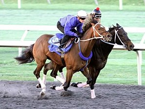 Three Blue Grass Hopefuls Work at Keeneland
