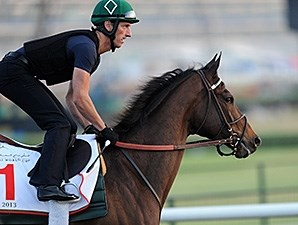 Royal Delta at Meydan in Dubai.