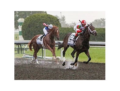 "Smarty Jones (left) finished 2nd in the Dixiana Breeders' Futurity.<br><a target=""blank"" href=""http://photos.bloodhorse.com/AtTheRaces-1/at-the-races-2013/27257665_QgCqdh#!i=2812673904&k=ZJFcdDS"">Order This Photo</a>"