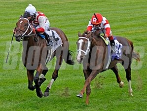 Animal Spirits in the 2011 Bourbon Stakes.