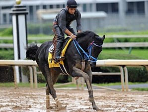 Decisive Moment in the 2011 Kentucky Derby.