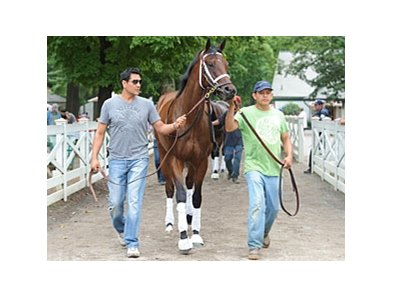 "Sweet Whiskey schooling at Saratoga on August 29.<br><a target=""blank"" href=""http://photos.bloodhorse.com/AtTheRaces-1/at-the-races-2013/27257665_QgCqdh#!i=2731813896&k=kFGvS8k"">Order This Photo</a>"