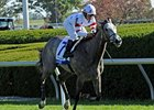 Laragh will get some play off her stakes win at Keeneland.
