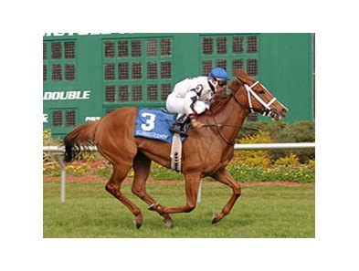 Hillsborough Stakes winner Dreaming of Anna is the one to beat in the Churchill Distaff Turf Mile (gr. IIIT).