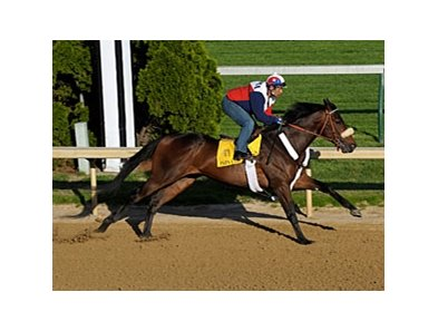 "Papa Clem works 7 furlongs on April 25 in preparation for the Kentucky Derby.<br><a target=""blank"" href=""http://www.bloodhorse.com/horse-racing/photo-store?ref=http%3A%2F%2Fpictopia.com%2Fperl%2Fgal%3Fprovider_id%3D368%26ptp_photo_id%3D8040105%26ref%3Dstory"">Order This Photo</a>"