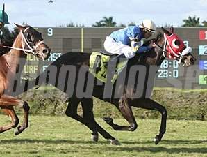 Sinister Brew wins the 2011 John Franks Juv Fillies Turf.