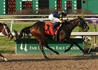 Indian Blessing wiil face just three foes in the Fair Grounds Oaks (gr. II) March 8.