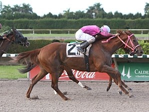 Joanie's Catch wins the 2010 Elmer Heubeck Distaff.