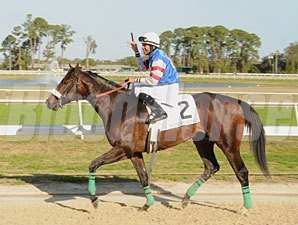 Musket Man wins the Tampa Bay Derby