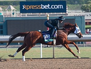 Groupie Doll - 2013 Breeders' Cup, October 26, 2013.