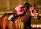 "Comma to the Top won the 2010 CashCall Futurity.<br><a target=""blank"" href=""http://www.bloodhorse.com/horse-racing/photo-store?ref=http%3A%2F%2Fpictopia.com%2Fperl%2Fgal%3Fprovider_id%3D368%26ptp_photo_id%3D9334968%26ref%3Dstory"">Order This Photo</a>"
