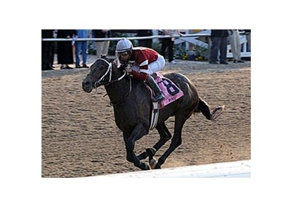 Pyro, winner of the Risen Star (gr. III) at Fair Grounds, tops a strong list of Toyota Blue Grass (gr. I) nominees.