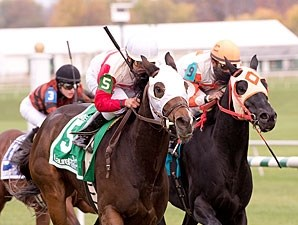 Jazzy Idea wins the 2012 Lauel Dash.