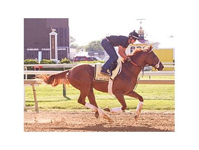 I'll Have Another galloping at Pimlico on May 12.
