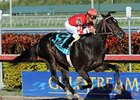 Determinato and Eibar Coa upset the Spectacular Bid.