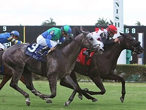 Successful Mission Makes Most of Miami Mile
