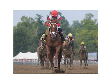 "D' Funnybone leads the way home in the Saratoga Special.<br><a target=""blank"" href=""http://www.bloodhorse.com/horse-racing/photo-store?ref=http%3A%2F%2Fpictopia.com%2Fperl%2Fgal%3Fprovider_id%3D368%26ptp_photo_id%3D8419328%26ref%3Dstory"">Order This Photo</a>"