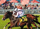 Wigmore Hall Seeks Repeat in Jebel Hatta