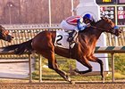 Brigand won the 2012 City of Laurel Stakes at Laurel Park.