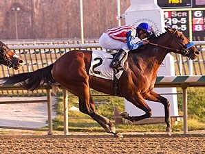 Brigand wins the 2012 City of Laurel Stakes.