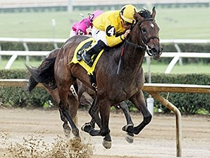 A. P.'s Glory wins the 2014 Mountaineer Juvenile Fillies Stakes.