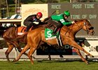 "Caracortado faces 6 in the Arcadia Stakes.<br><a target=""blank"" href=""http://www.bloodhorse.com/horse-racing/photo-store?ref=http%3A%2F%2Fpictopia.com%2Fperl%2Fgal%3Fprovider_id%3D368%26ptp_photo_id%3D9387851%26ref%3Dstory"">Order This Photo</a>"