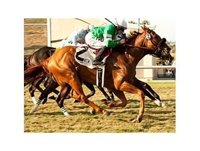 "Caracortado gets his nose in front at the wire to win the Del Mar Mile.<br><a target=""blank"" href=""http://www.bloodhorse.com/horse-racing/photo-store?ref=http%3A%2F%2Fpictopia.com%2Fperl%2Fgal%3Fprovider_id%3D368%26ptp_photo_id%3D9648774%26ref%3Dstory"">Order This Photo</a>"