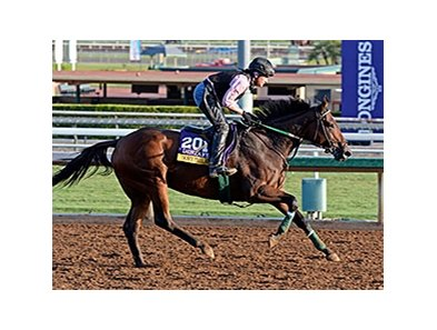 Don't Tell Sophia